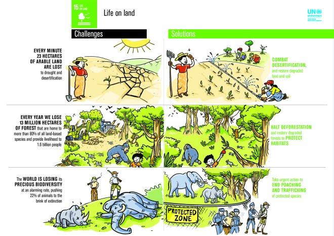 15_Life on land_FINAL