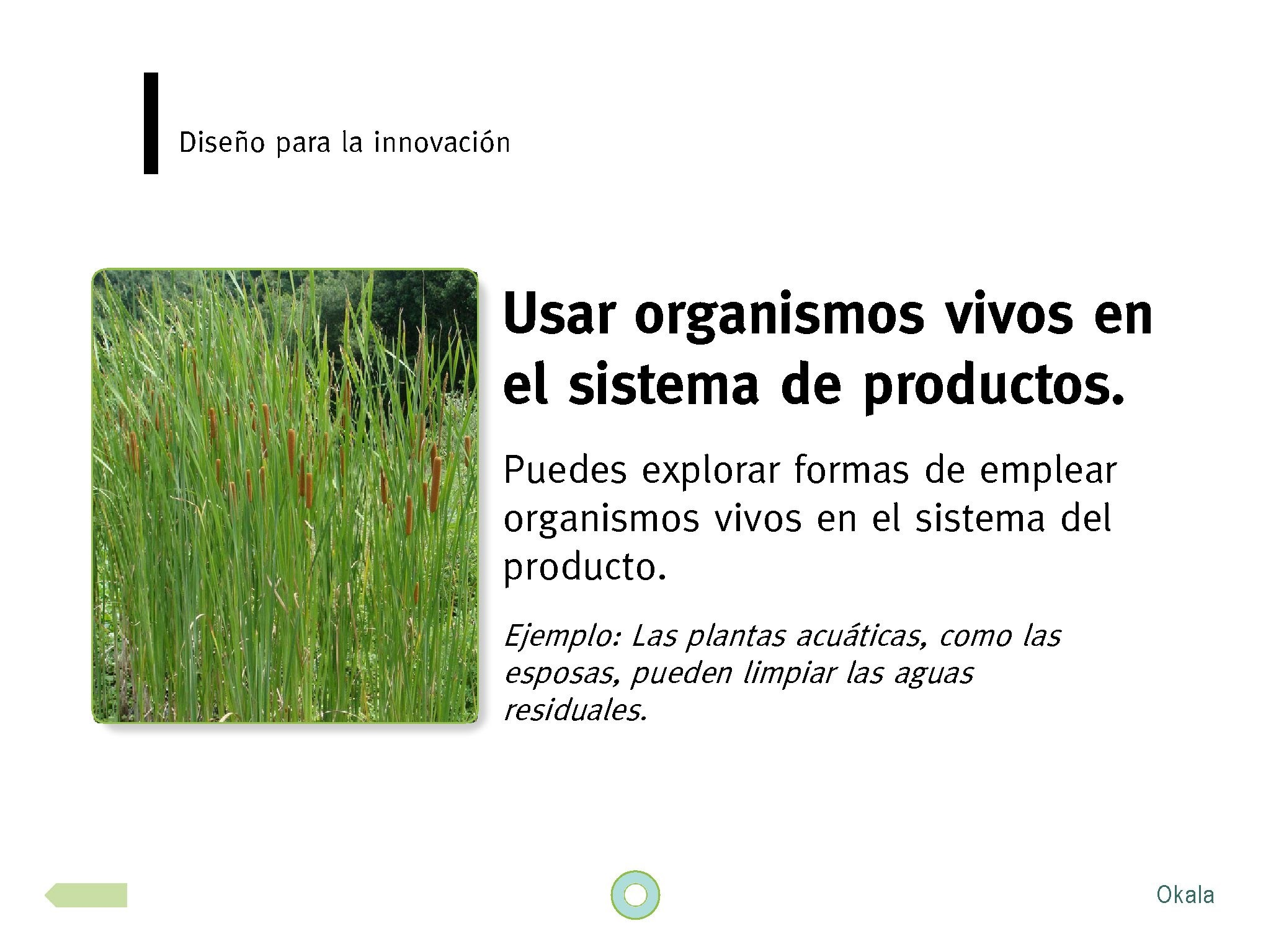 okala-ecodesign-strategy-guide-2012-spanish.new_page_07-1