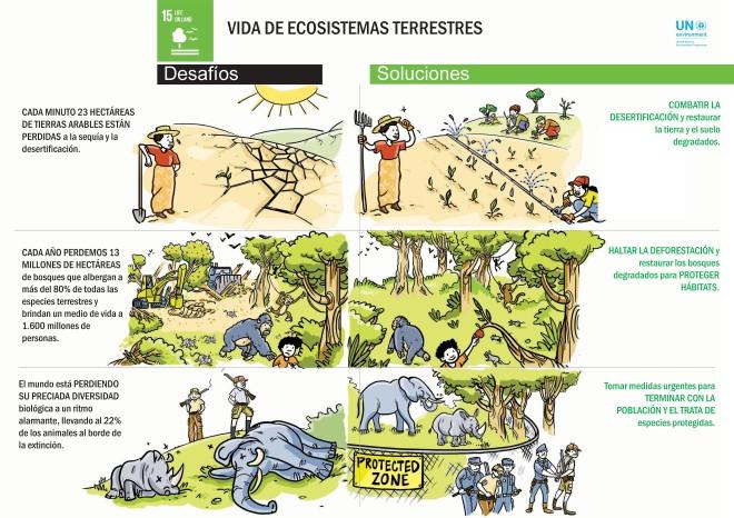 sdg.cartoons.spanish_page_12